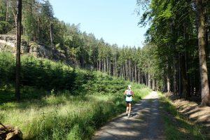 běh Vojtěchovským dolem